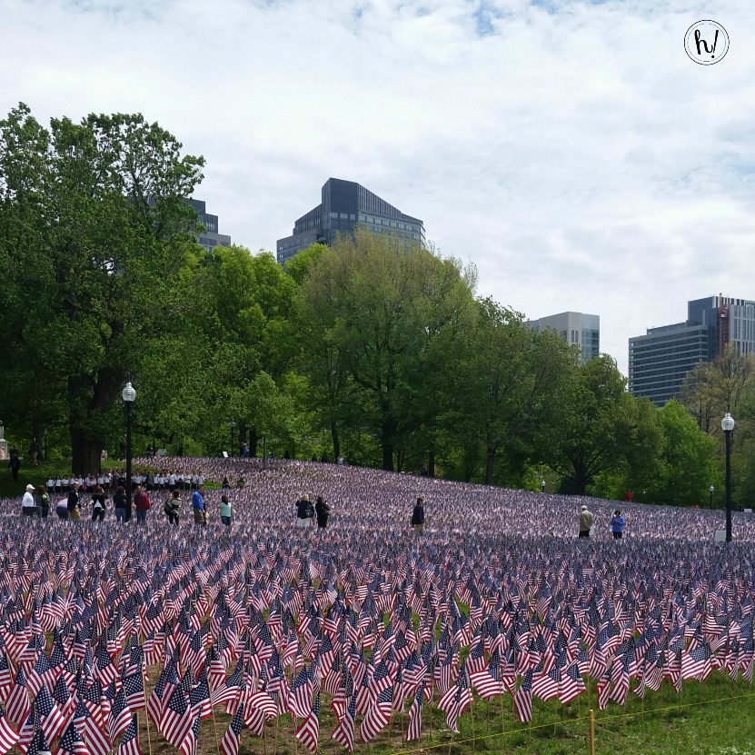 Memorial Day Flags in Boston Hurray Kimmay