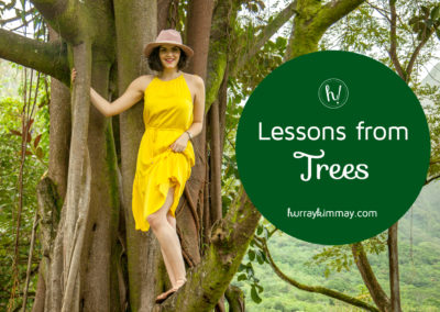 Lessons from Trees Hurray Kimmay blog post title