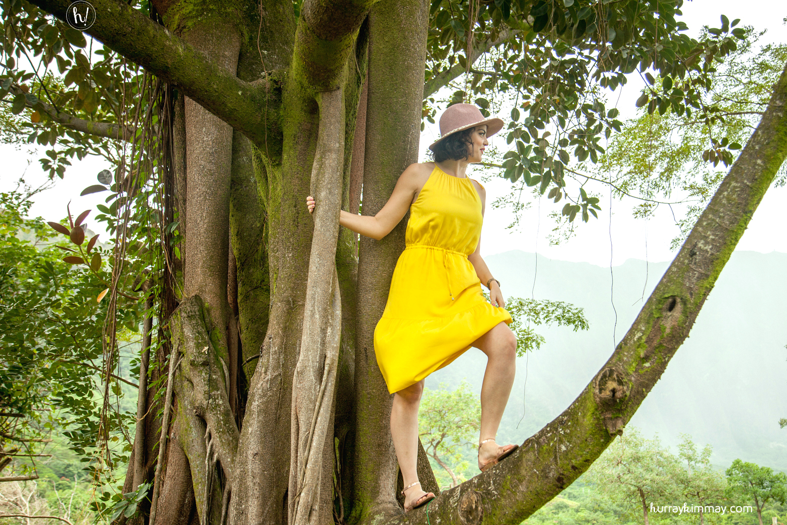 Go out on a limb! Kimmay explains how she learns lessons from trees in this Hurray Kimmay blog