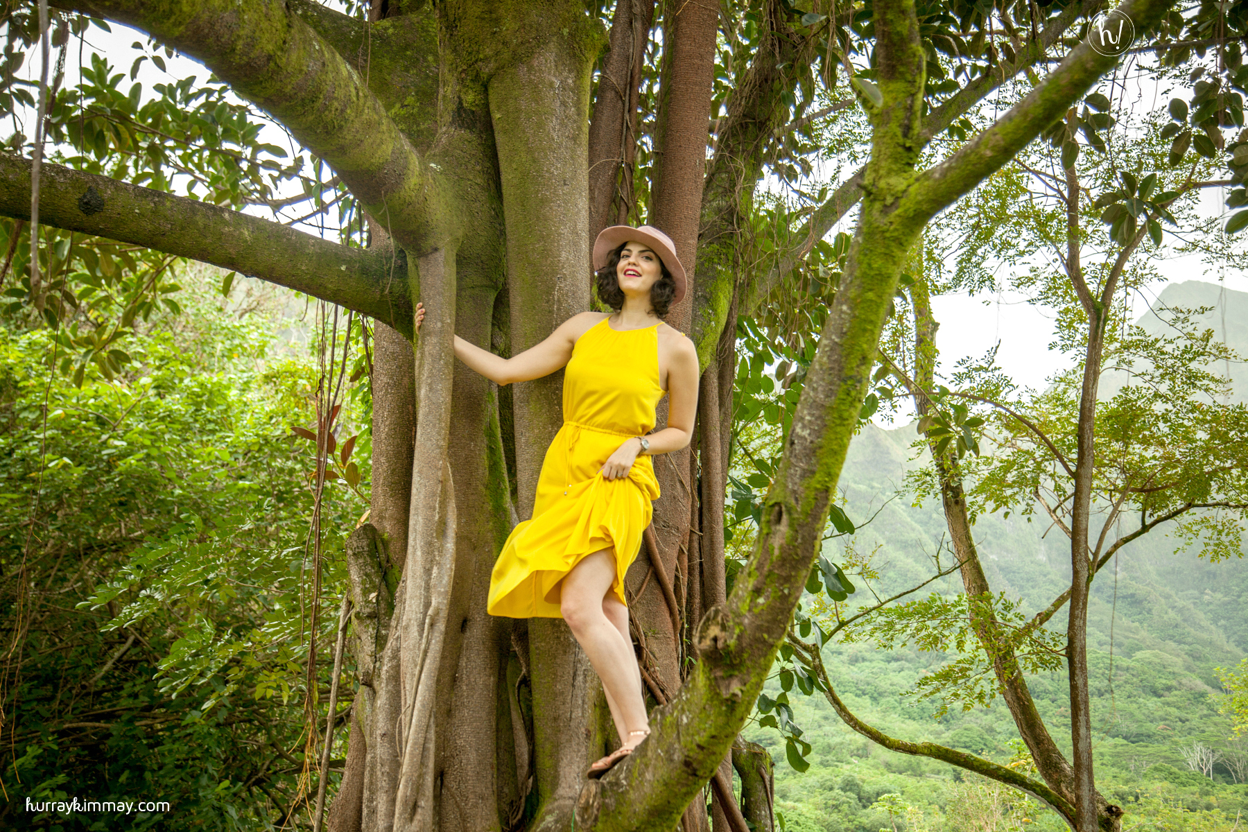 Find your courage to take a risk and learn more lessons from trees in Kimmay's new blog